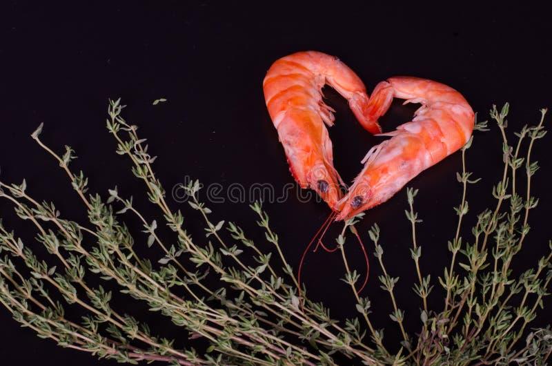 形成心脏用迷迭香的两只虾 免版税库存图片