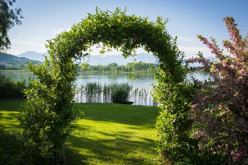 形成曲拱的被编织的植物在庭院里由湖 免版税图库摄影