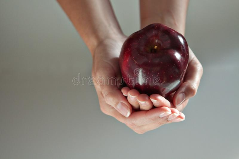 形成碗的2只手塑造与在它的苹果计算机 免版税库存图片