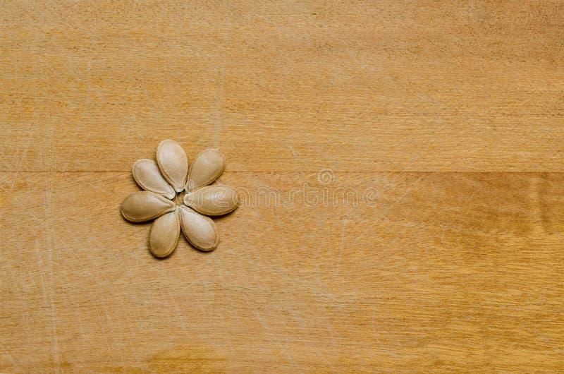 形成轻的木表面上的南瓜籽一朵花 库存照片