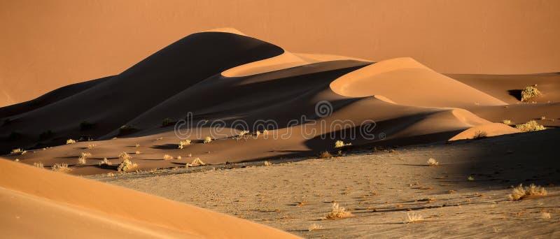形状和颜色沙丘摘要  免版税库存图片