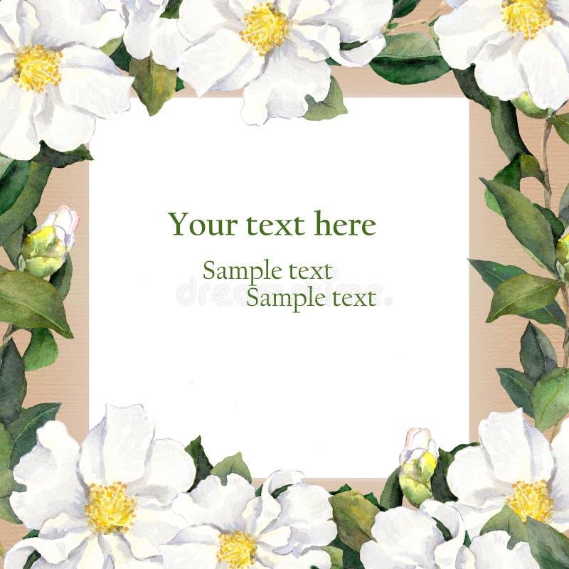 水彩与减速火箭的花卉框架白花的葡萄酒明信片 库存例证