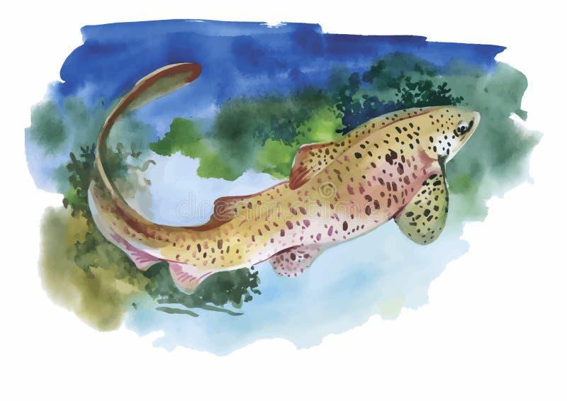 水彩与热带鱼的海洋生物背景 库存例证