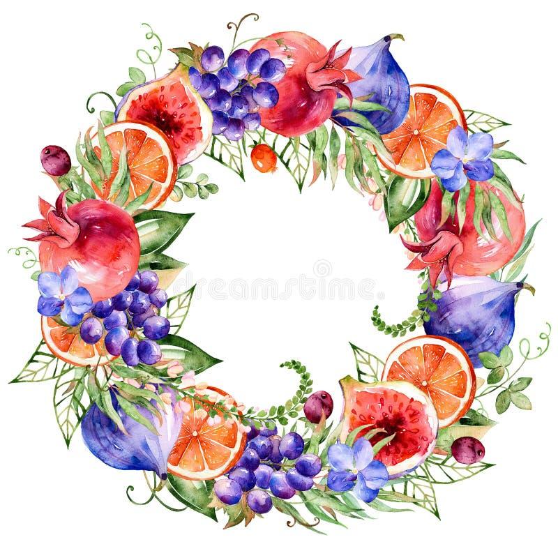水彩五颜六色的圆的框架开花,石榴,葡萄,桔子,无花果,兰花 库存例证