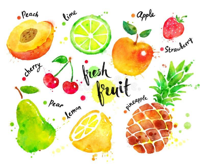 自然包括有人,美食,菠萝,图片,有机,柠檬,桃子,成份7up对象v自然图片