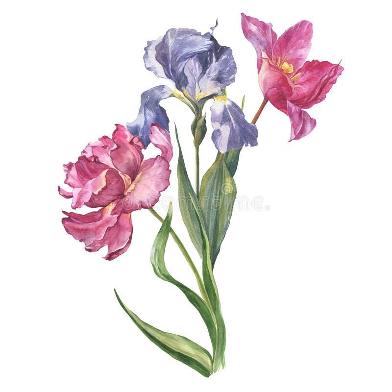 水彩五颜六色的花 库存图片