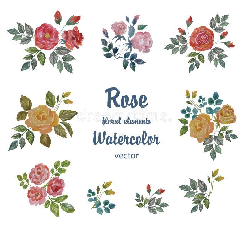水彩传染媒介设置与装饰的玫瑰分支 皇族释放例证