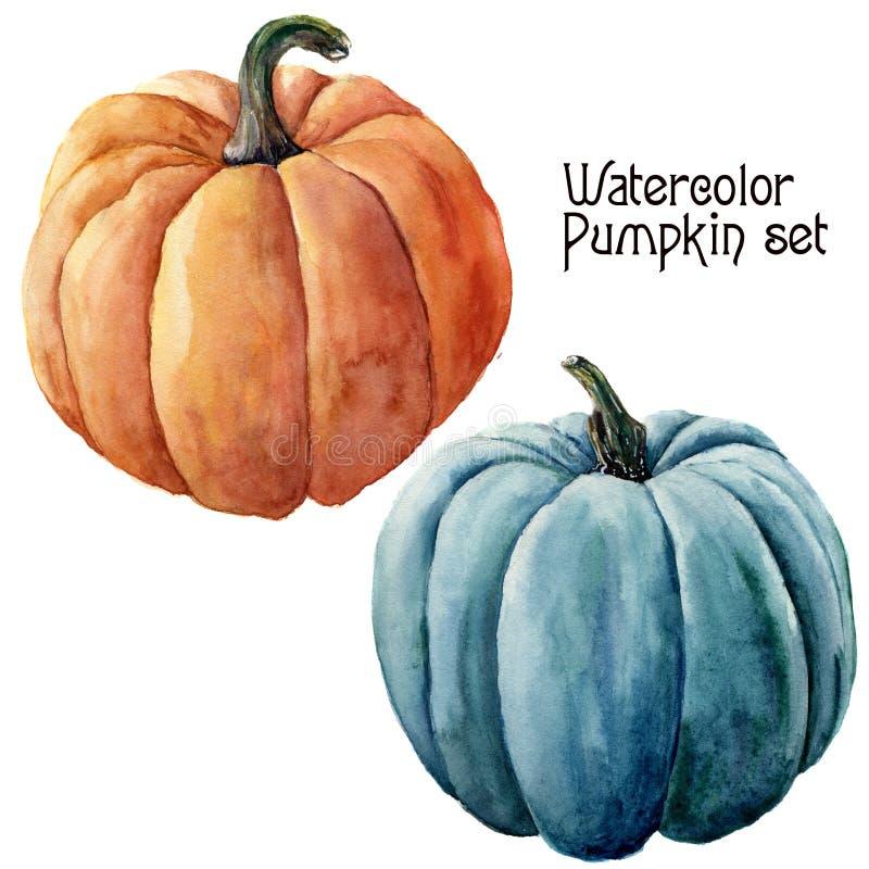 水彩南瓜集合 在白色背景隔绝的手画橙色和蓝色菜 秋天设计的南瓜印刷品 向量例证