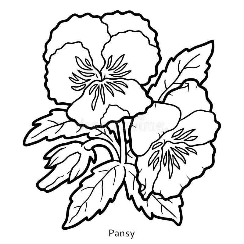 亚州情色蝴蝶逼_插画 包括有 着色, 花卉, 开花, 草甸, 蝴蝶花, 无色, 精美, 可打印