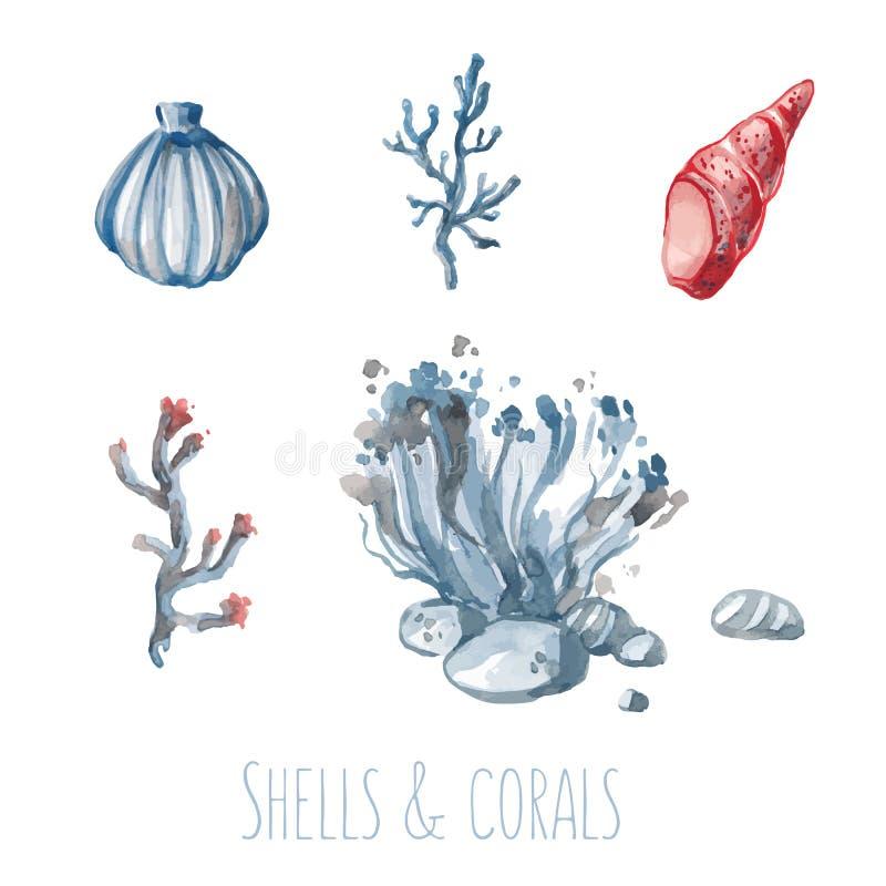 水彩套壳和珊瑚 向量例证