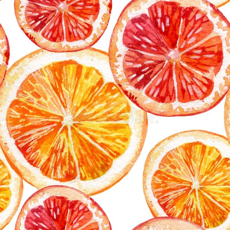 水彩套新鲜的桔子、猕猴桃和葡萄柚 向量例证
