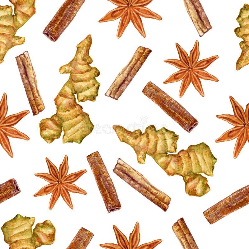 水彩姜根,八角,桂香,在白色背景隔绝的手拉的姜例证,无缝的样式,器官 库存例证