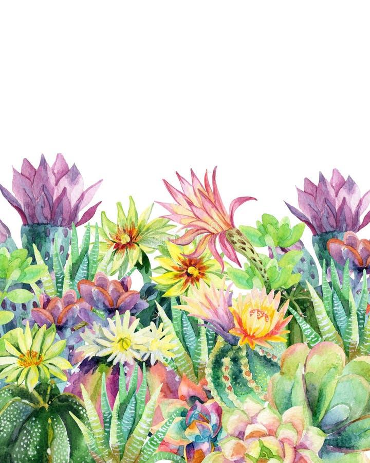 水彩开花的仙人掌背景 向量例证