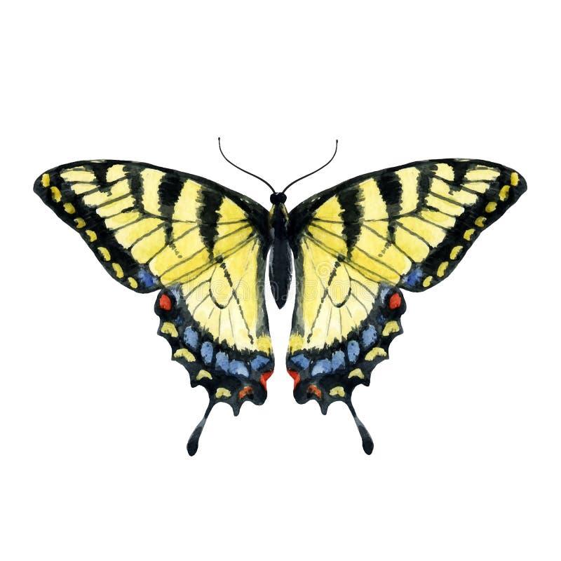 水彩手拉的蝴蝶 皇族释放例证