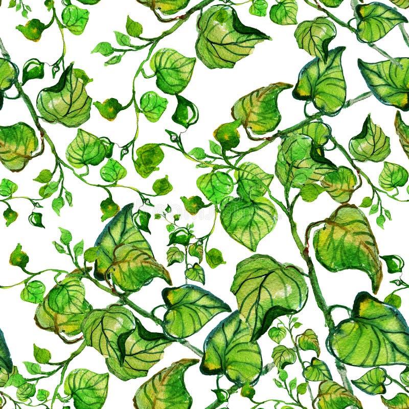 水彩无缝与分支和叶子 向量例证