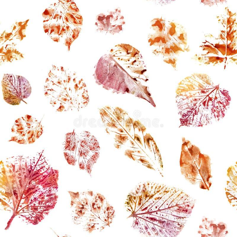 水彩无缝的样式 在白色地面的秋叶 库存例证