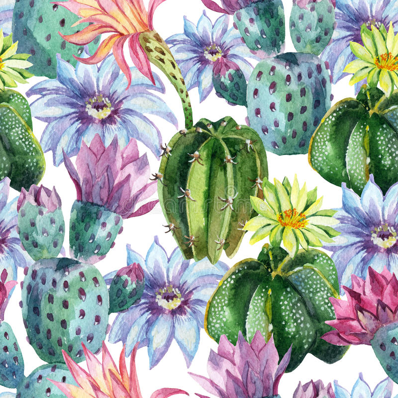 水彩无缝的仙人掌样式 向量例证
