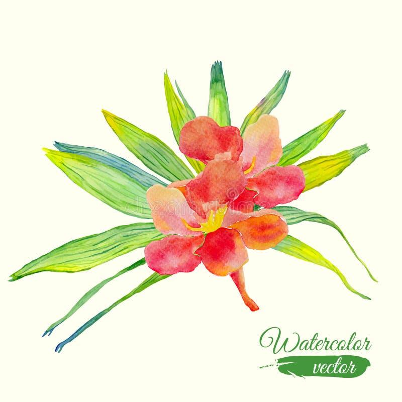 水彩木槿花和棕榈叶花束 库存例证