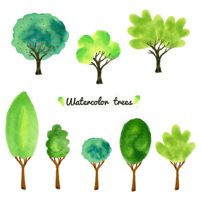 水彩样式树,灌木的一汇集的传染媒介例证和草,隔绝在白色 向量例证