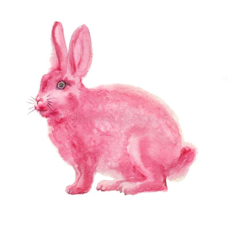 水彩桃红色兔子 向量例证