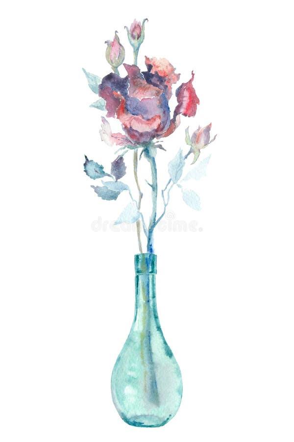 水彩桃红色玫瑰 向量例证