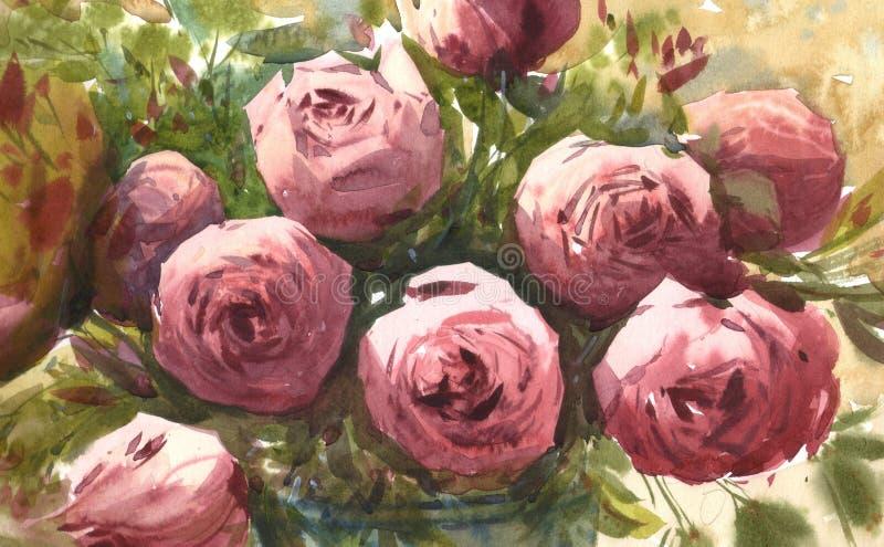 水彩桃红色玫瑰 库存例证