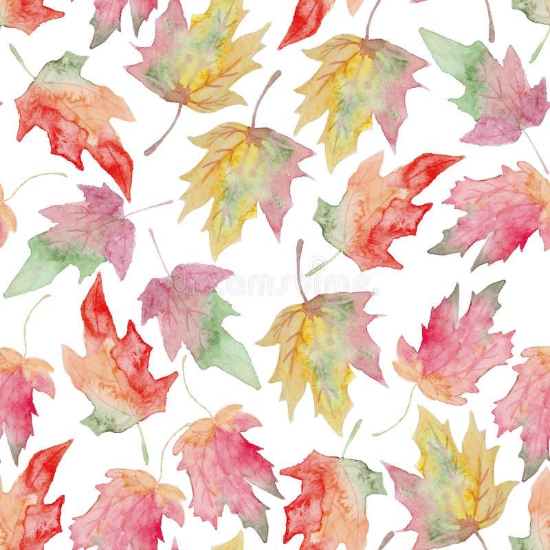 水彩槭树秋天叶子无缝的样式 皇族释放例证