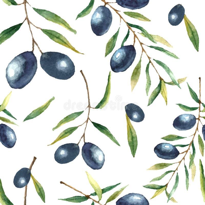 水彩橄榄树枝背景 向量例证