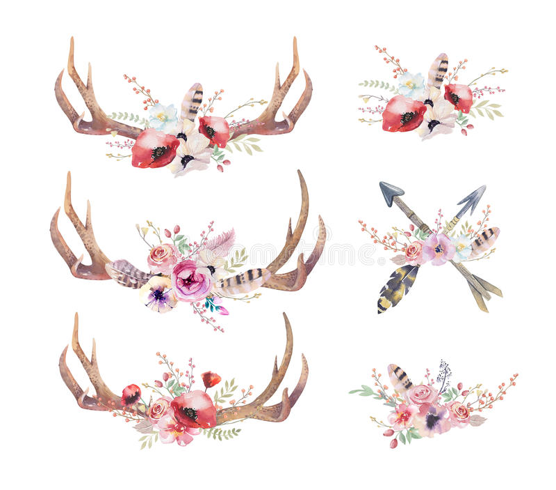 水彩漂泊鹿垫铁 西部哺乳动物 水彩臀部 库存例证