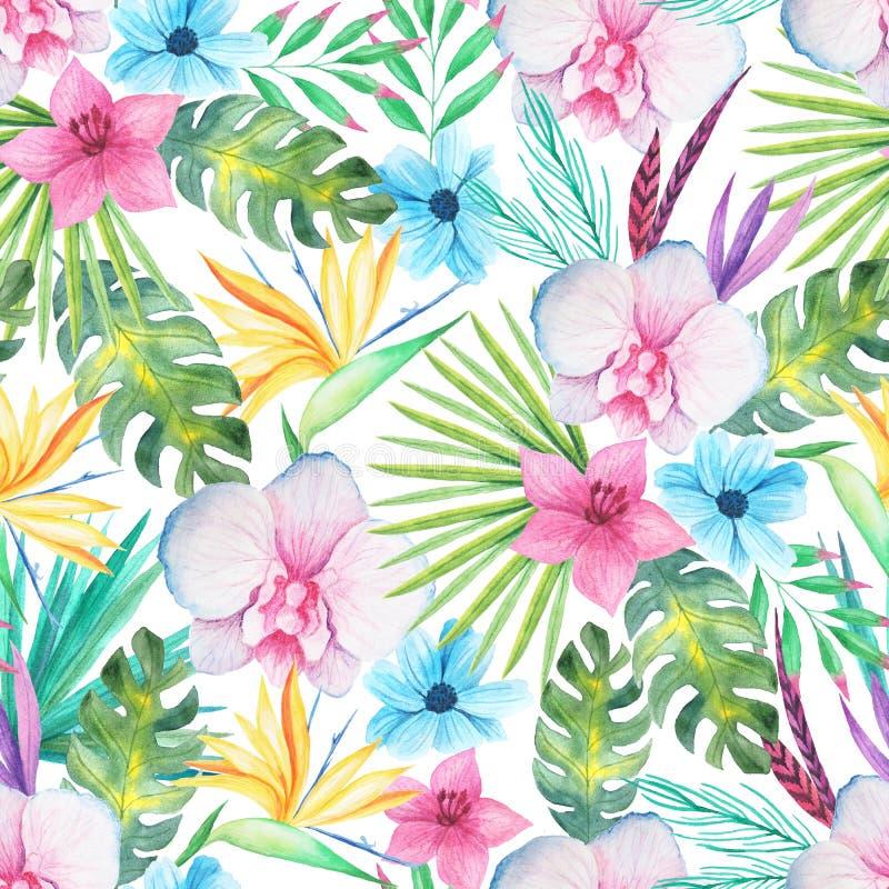 水彩热带花卉无缝的样式 向量例证