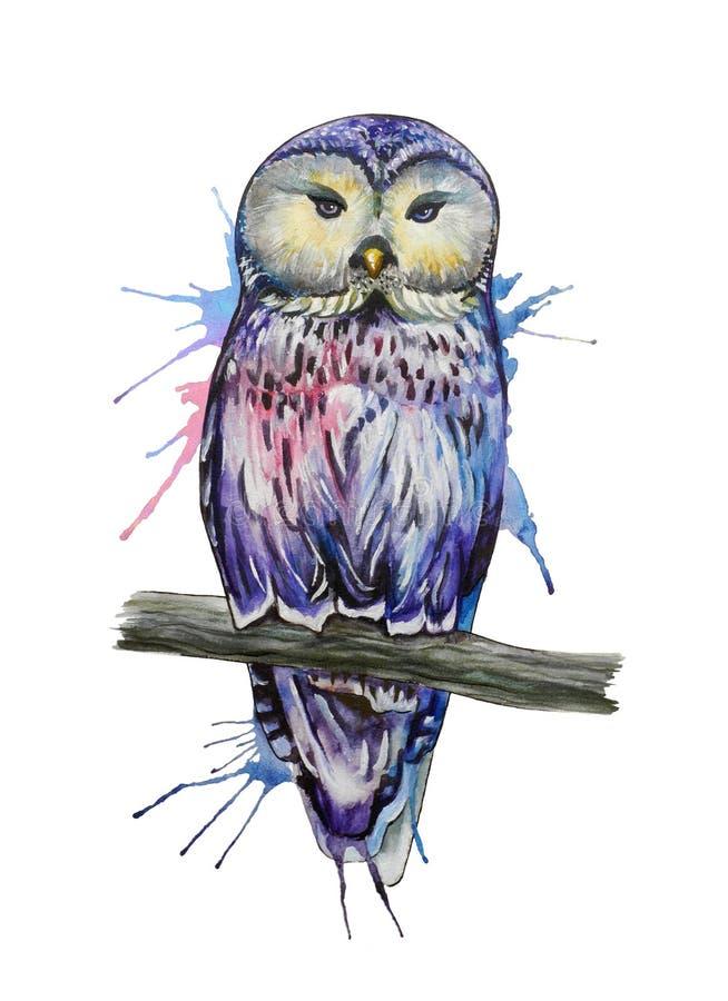 水彩猫头鹰剪影 向量例证