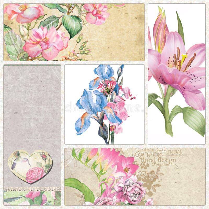 水彩玫瑰、虹膜和百合 库存例证