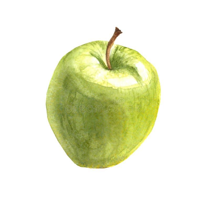 水彩现实绿色苹果 免版税库存照片