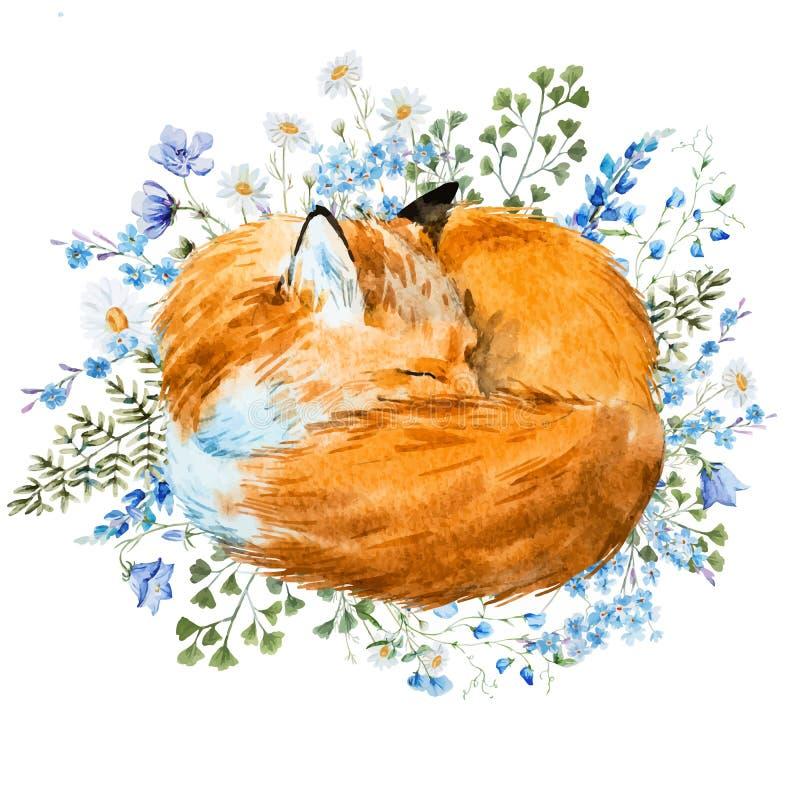 水彩睡觉狐狸 皇族释放例证