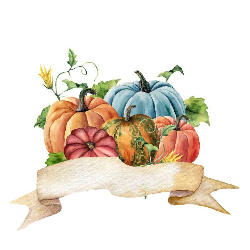水彩秋天标签 手画丝带用与在白色背景和花的明亮的南瓜隔绝的叶子 库存例证