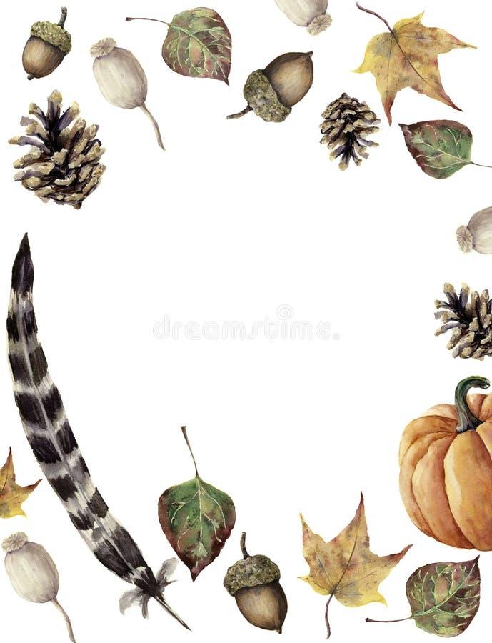 水彩秋天边界 手画杉木锥体、橡子、莓果、黄色和绿色秋天叶子、羽毛和南瓜 向量例证