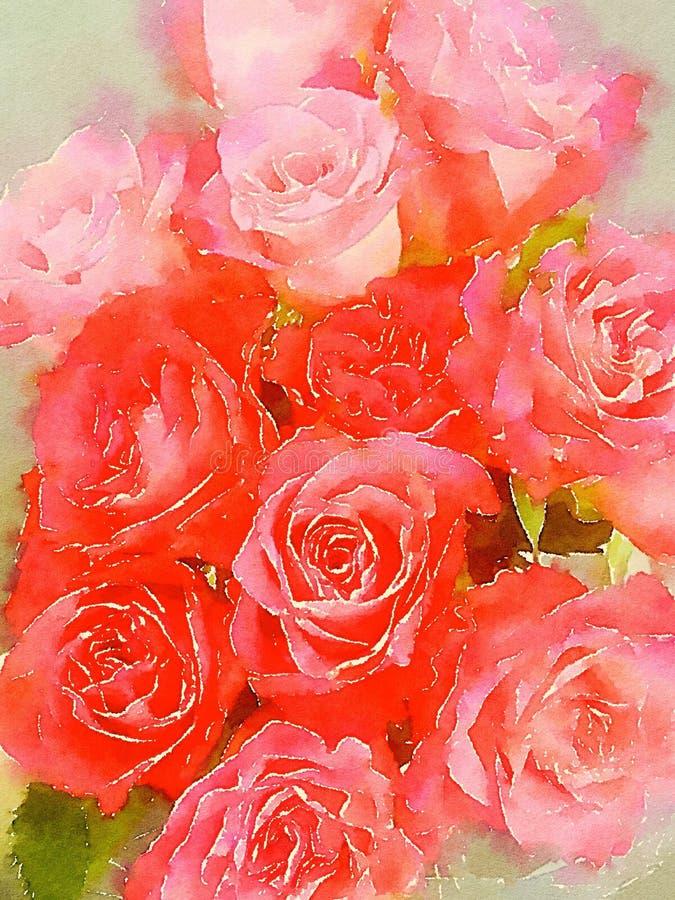 水彩红色和桃红色玫瑰背景 皇族释放例证