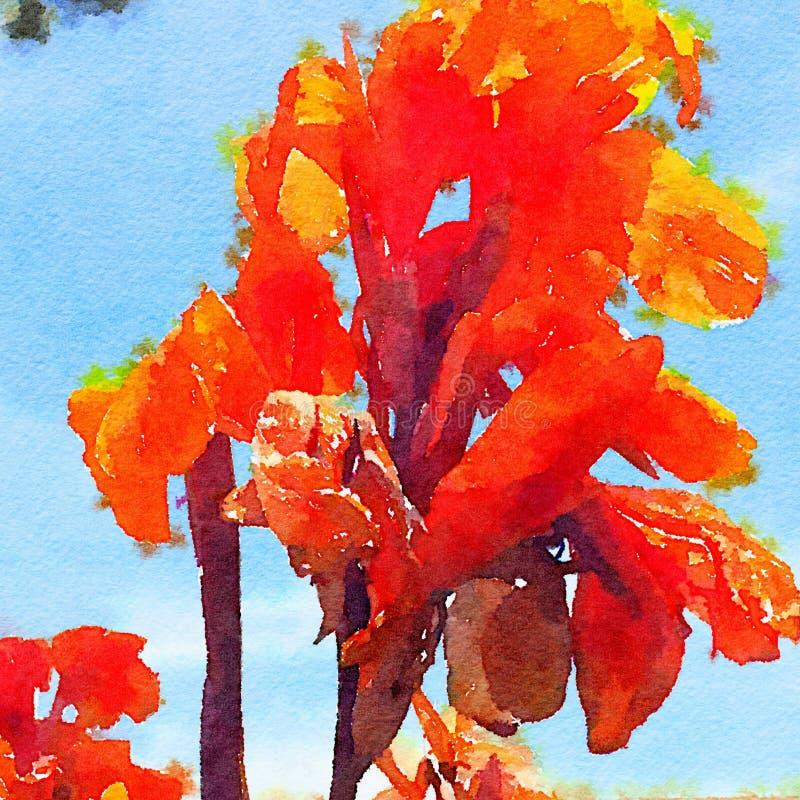 水彩红色花卉花背景 免版税图库摄影