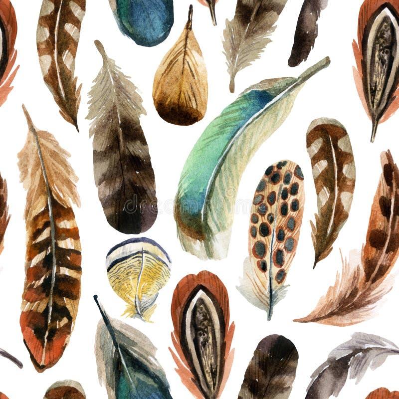 水彩羽毛背景 向量例证