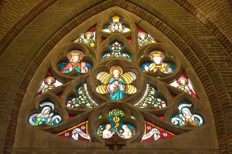 彩色玻璃在一个哥特式大教堂里 免版税库存照片