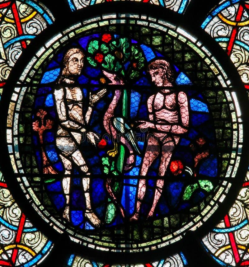 彩色玻璃-亚当和伊芙 库存图片