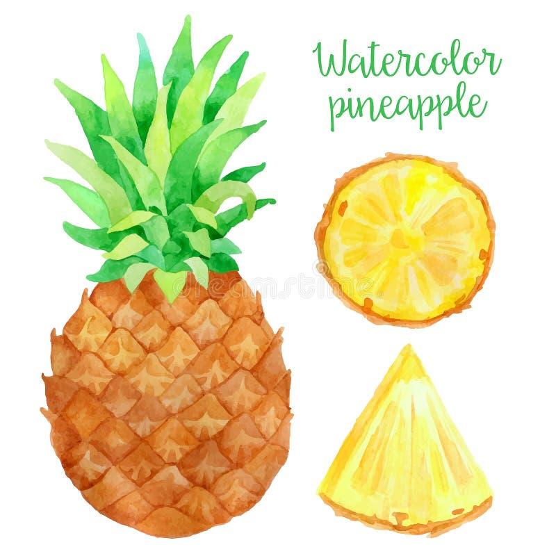 水彩菠萝 皇族释放例证
