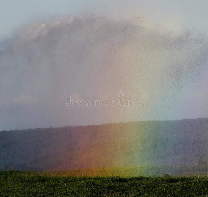 彩虹喷水隆头阵雨 库存图片