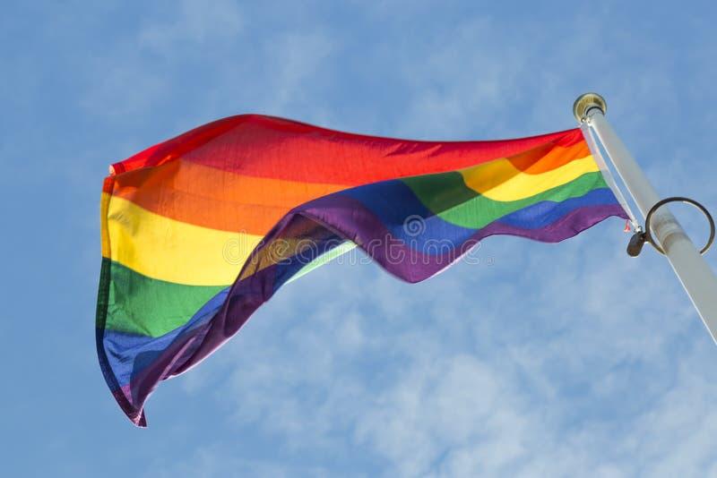 彩虹沙文主义情绪在风 库存照片