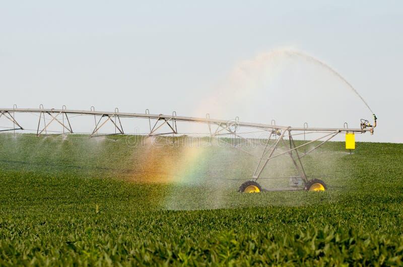 彩虹灌溉 免版税库存图片