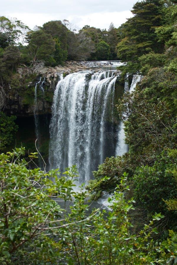 彩虹秋天和发辫在Kerikeri附近在北国在北岛在新西兰 免版税图库摄影