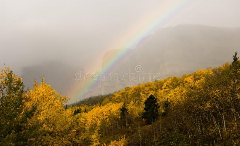 彩虹秋天颜色落矶山冰川国家公园蒙大拿 免版税库存照片