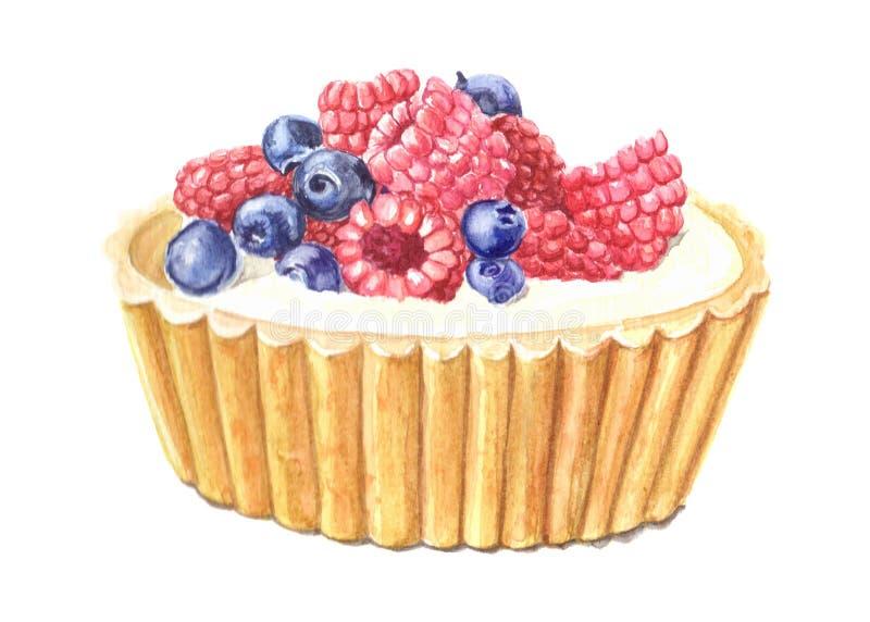 水彩蛋糕用莓果 库存照片