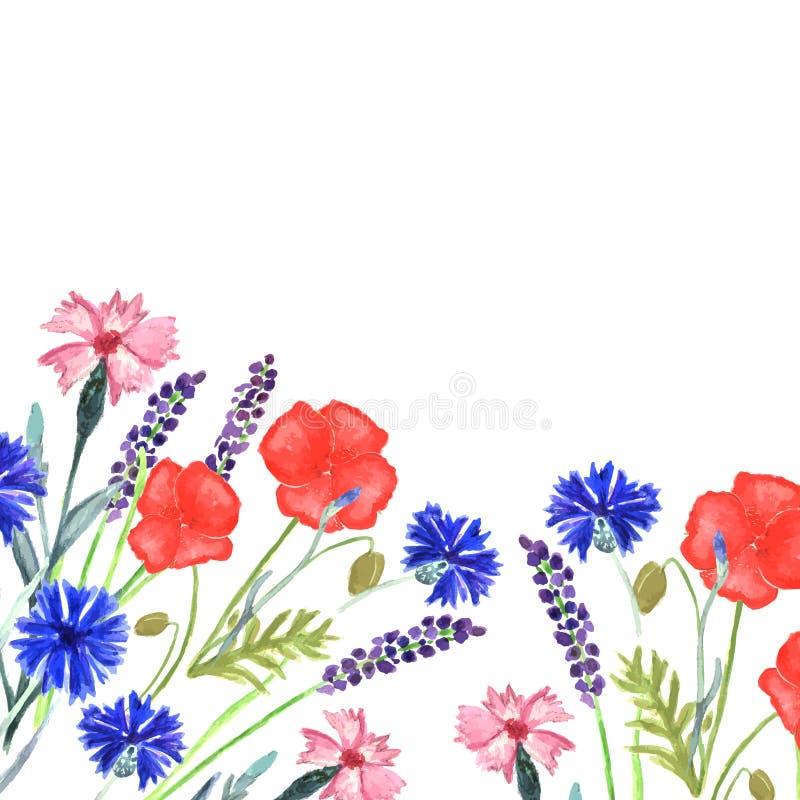 水彩被绘的婚姻的邀请 矢车菊、淡紫色、香豌豆花和鸦片花纹花样 库存例证