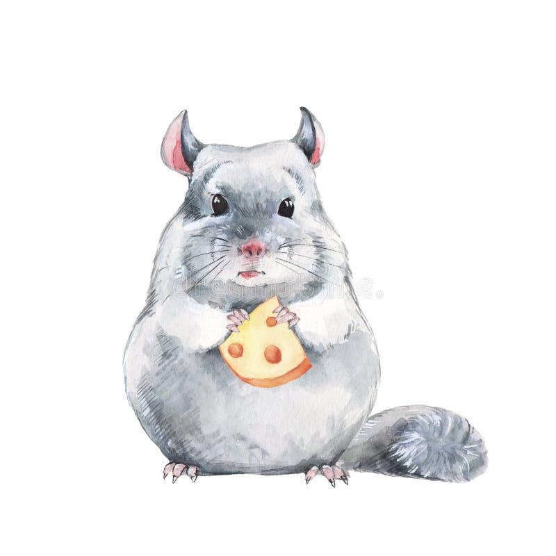 水彩逗人喜爱的老鼠 向量例证